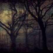 幽霊とプラズマクラスター?ファブリーズの抗菌と種類の話