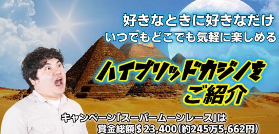 オンラインスポーツのブックメーカーギャンブルでカジノ!海外有望の賭けるコツ
